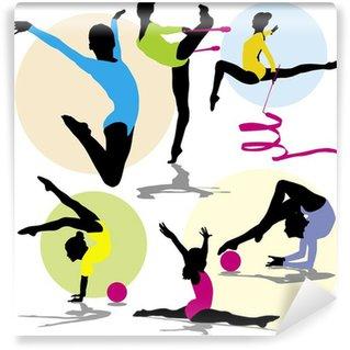 Wall Mural - Vinyl set vector silhouettes rhythmic gymnastics