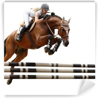 show jumping /stylized by oil painting/ - isolated on white Vinyl Wall Mural