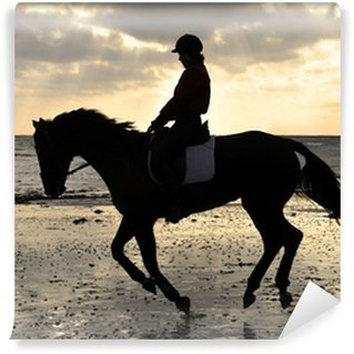 Silhouette of a Horse Rider Cantering on the Beach Wall Mural - Vinyl
