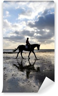Silhouette of a Horse Rider Walking on Beach Wall Mural - Vinyl