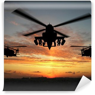 Vinyl Wall Mural silhouette of helicopter