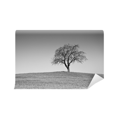 Single black and white tree wall mural vinyl pixers for Black and white tree wall mural