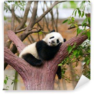 Sleeping giant panda baby