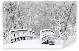 Snow covered foot bridge and forest Wall Mural - Vinyl