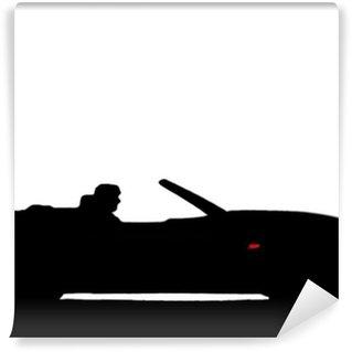 Sport car silhouette Vinyl Wall Mural