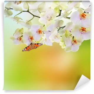 Spring beautiful nature background Wall Mural - Vinyl