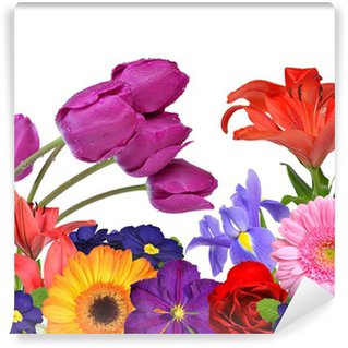 Spring flowers isolated on white background Wall Mural - Vinyl