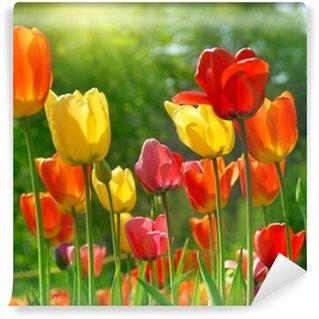 Spring flowers Wall Mural - Vinyl