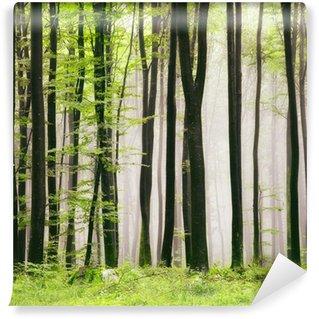 Wall Mural - Vinyl Spring forest