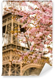 Wall Mural - Vinyl Spring in Paris. Bloomy cherry tree and the Eiffel Tower