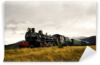 Wall Mural - Vinyl Steam Train in a Open Countryside