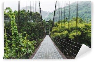 Steel suspension bridge, crossing the river in the woods