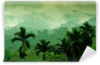Sumatran mountains Vinyl Wall Mural