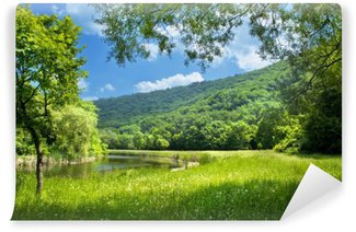 Wall Mural - Vinyl summer landscape with river and blue sky