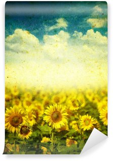 sunflowers on a grunge background