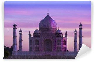 Taj Mahal ,Agra, India Wall Mural - Vinyl