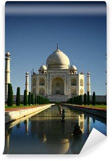 Taj Mahal - Agra, India Wall Mural - Vinyl