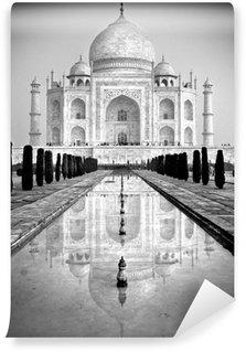 Taj Mahal, Agra, Uttar Pradesh, India. Vinyl Wall Mural