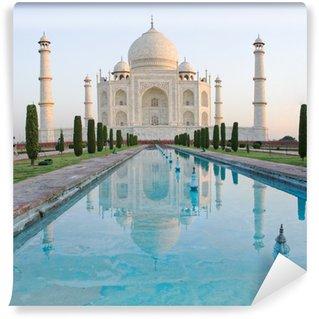 Taj Mahal in Agra, India Vinyl Wall Mural