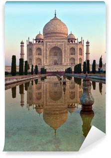 Taj Mahal in India Wall Mural - Vinyl