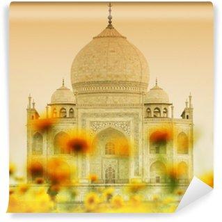 Taj Mahal in sunset light, Agra, Uttar Pradesh, India Wall Mural - Vinyl
