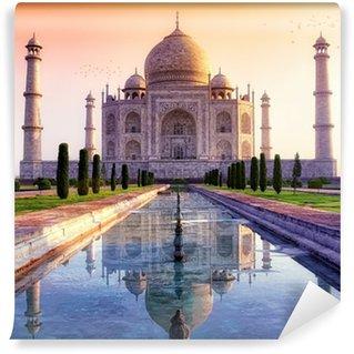 Taj Mahal v2 Wall Mural - Vinyl