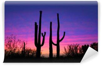 Tall saguaro cactus plants against evening sky Wall Mural - Vinyl