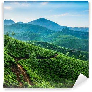 Wall Mural - Vinyl Tea plantations