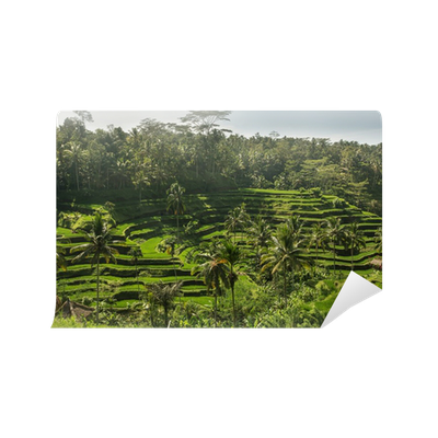 The green fields rice at tegalang village ubud indonesia for Mural indonesia