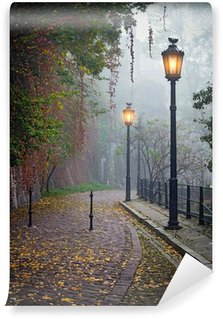 The mysterious alleyway in foggy autumn time with lighted lamps