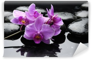 therapy stones and orchid flower with water drops