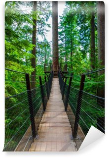 Treetop Suspension Bridge in Capilano Park, British Columbia Wall Mural - Vinyl