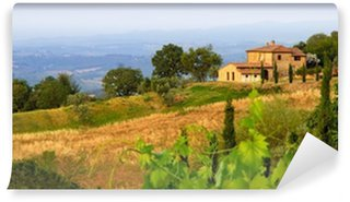 Vinyl Wall Mural Tuscan landscape panorama in evening sun