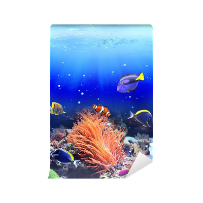 Underwater scene with tropical fish Wall Mural • Pixers ...