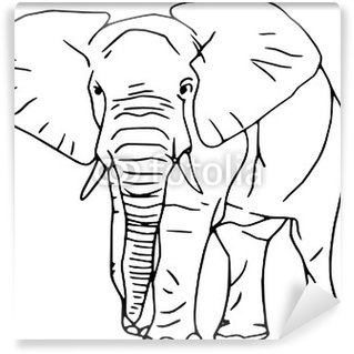 Vector - contour elephant isolated on white background Wall Mural - Vinyl