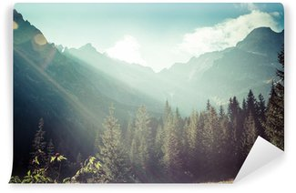 Vinyl Wall Mural View of Tatra Mountains from hiking trail. Poland. Europe.