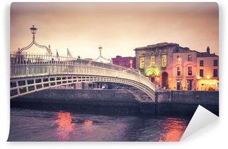 Vintage style historic Ha'penny Bridge, Dublin Ireland at dusk