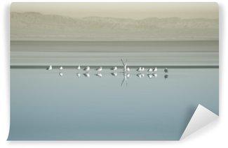 Wall Mural - Vinyl Vogelschwarm am Saltonsee / Die Brutkolonie von Vogelschwärmen am Saltonsee in Kalifornien.