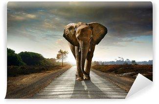 Walking Elephant Wall Mural - Vinyl