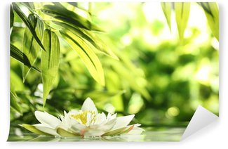 water lily Wall Mural - Vinyl