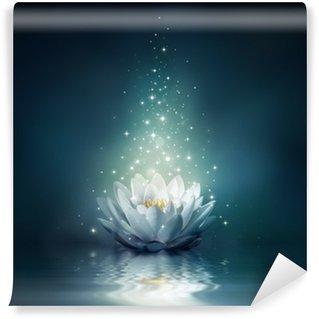 waterlily on water - fairytale background Wall Mural - Vinyl