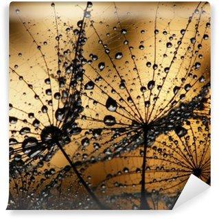wet dandelion seed Wall Mural - Vinyl