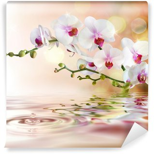Wall Mural - Vinyl white orchids on water with drop