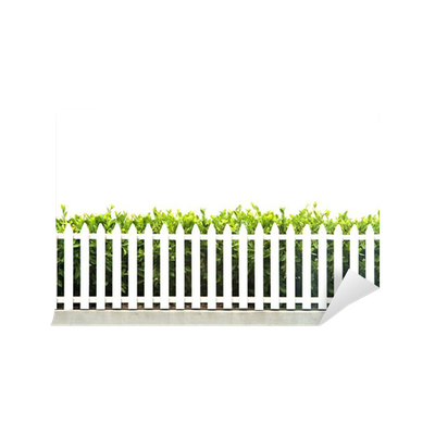 Picket fence fever definition best idea garden for Define mural thrombus
