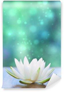 white water lilly flower Wall Mural - Vinyl