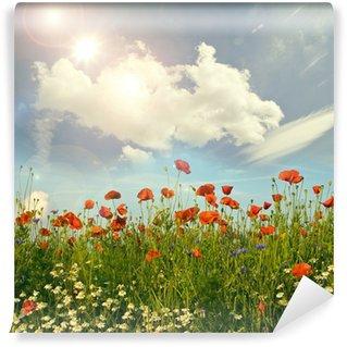 Wildblumen im Frühling: Klatschmohn, Margeriten und Kornblumen Wall Mural - Vinyl
