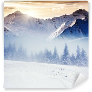 winter Wall Mural - Vinyl