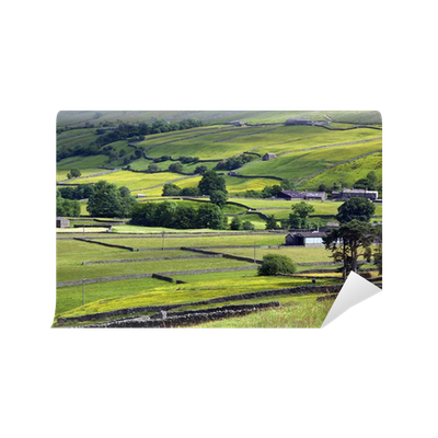 Yorkshire dales england wall mural pixers we live for England wall mural