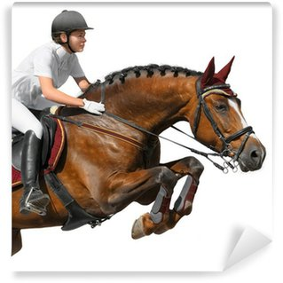 Young girl jumping with bay horse Wall Mural - Vinyl