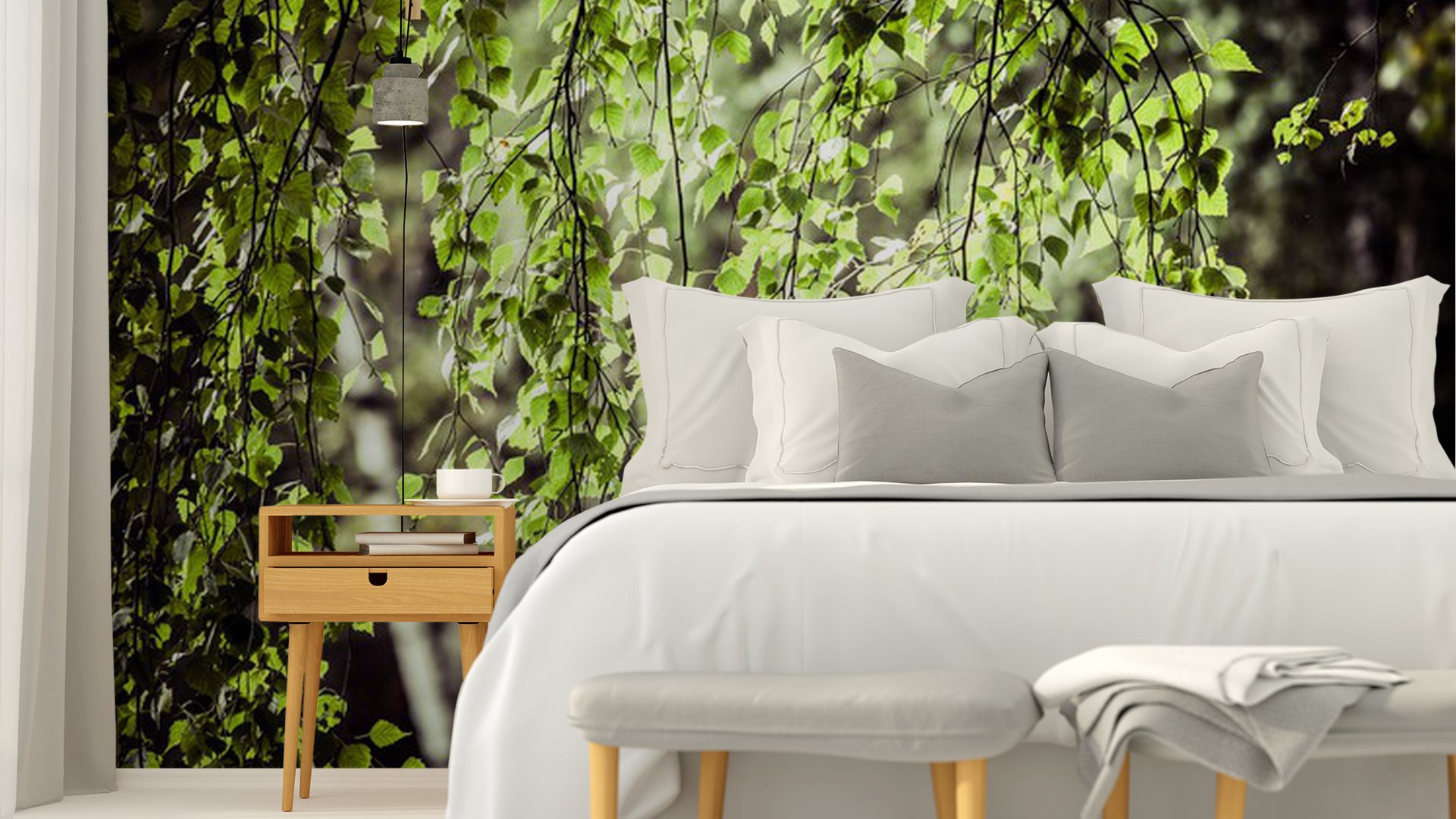 Beautiful birch trees in a summer forest vinyl wall mural for Beautiful birch tree wall mural
